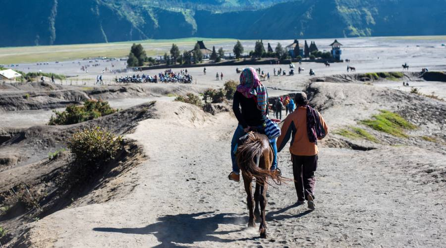 Trasporto tramite i cavalli