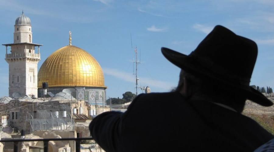 JLM dalla Sinagoga