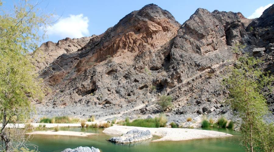oasi in Oman