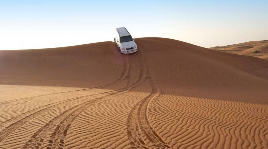 Dubai Safari nel deserto