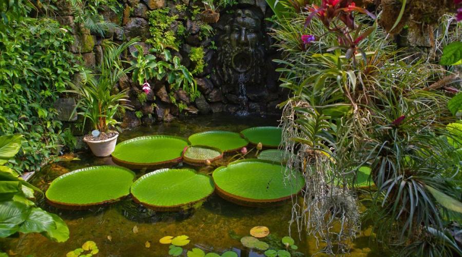 Giardini della Mortella