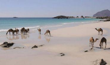 Eden Village Premium Al Fanar 4 stelle superior: mare cristallino e spiagge incantevoli