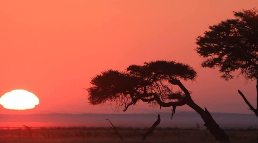 amanecer en Etosha