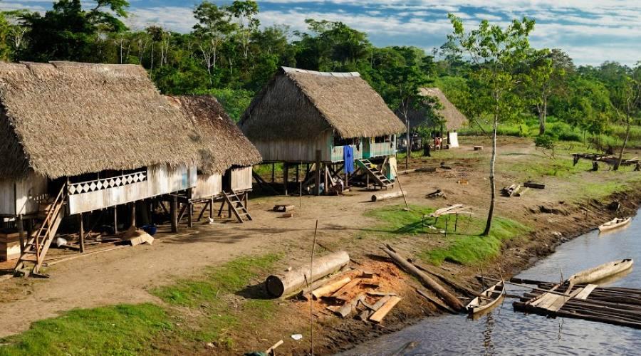 Tour Carioca completo: Amazzonia