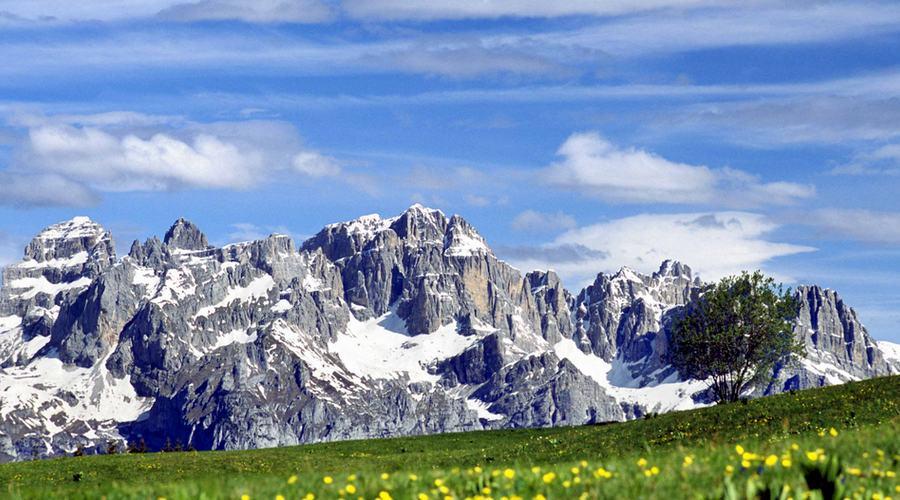 I fiori e le Dolomiti del Brenta