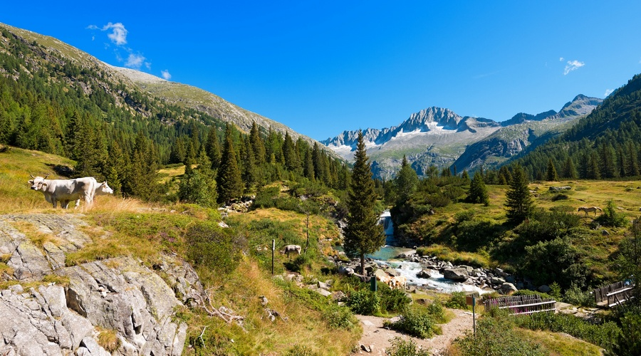 Parco nazionale Adamello Brenta