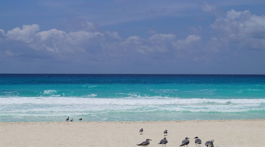 Solymar Beach: Spiaggia