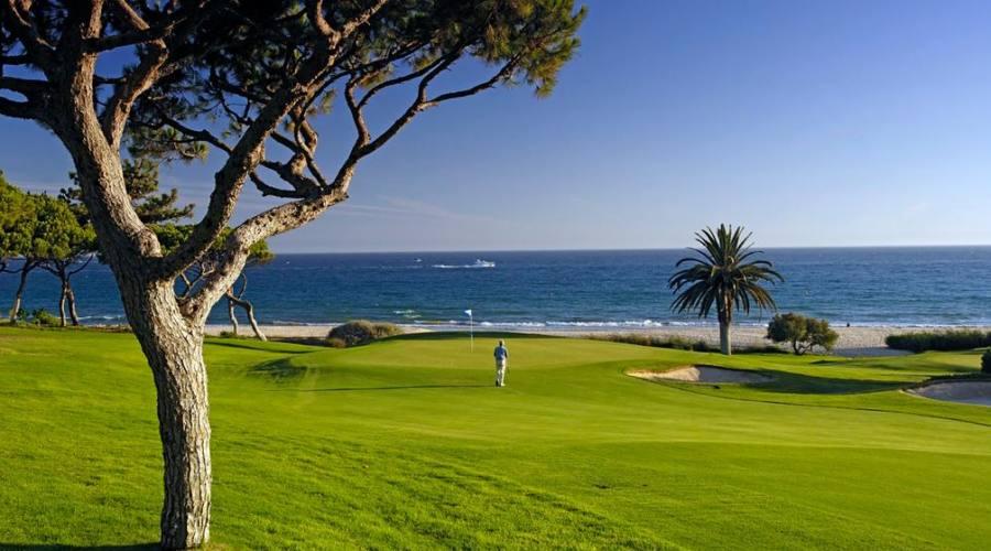 Golf Ocean