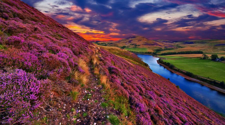 Colori delle Highlands