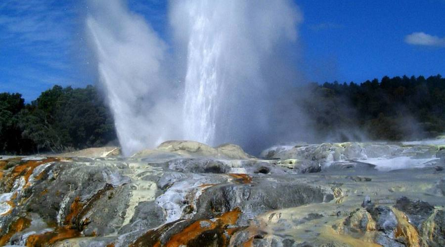 Geyser in New Zealand