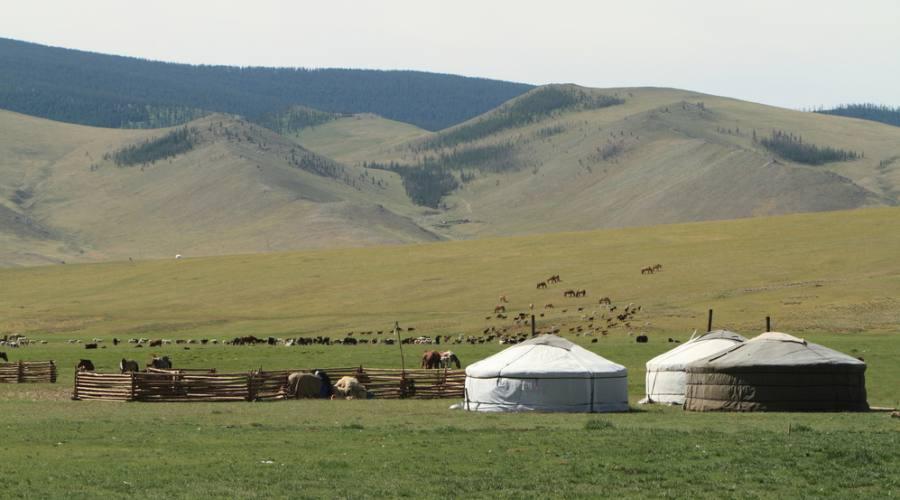 Gher camp