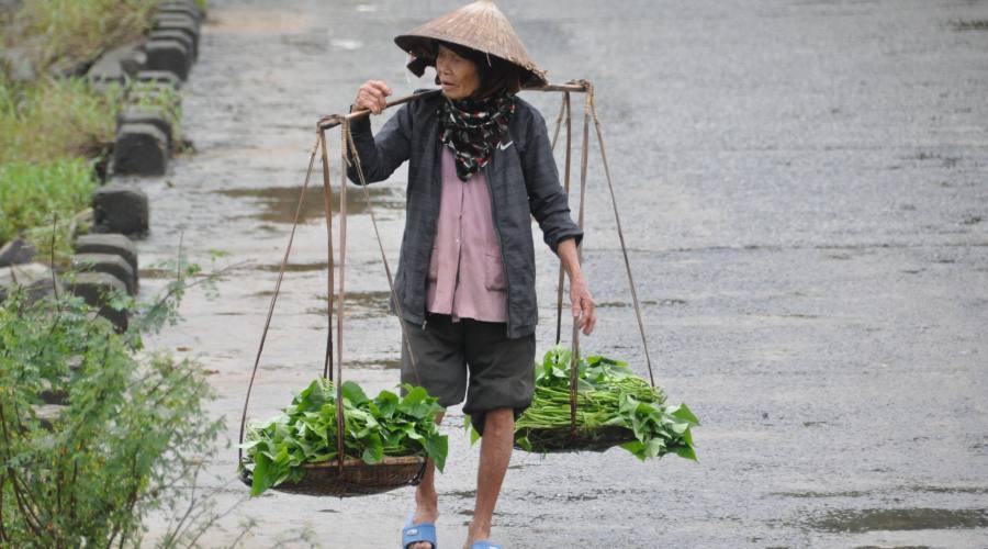 la vita contadina