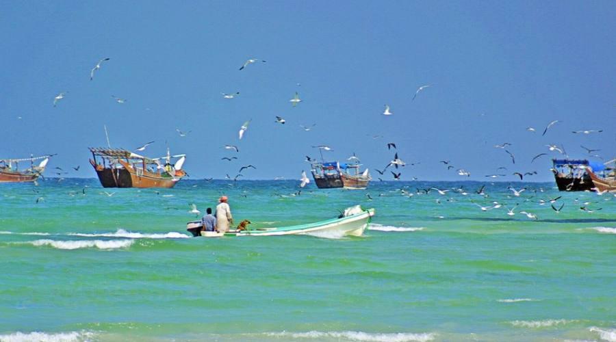 Pesca a Salalah