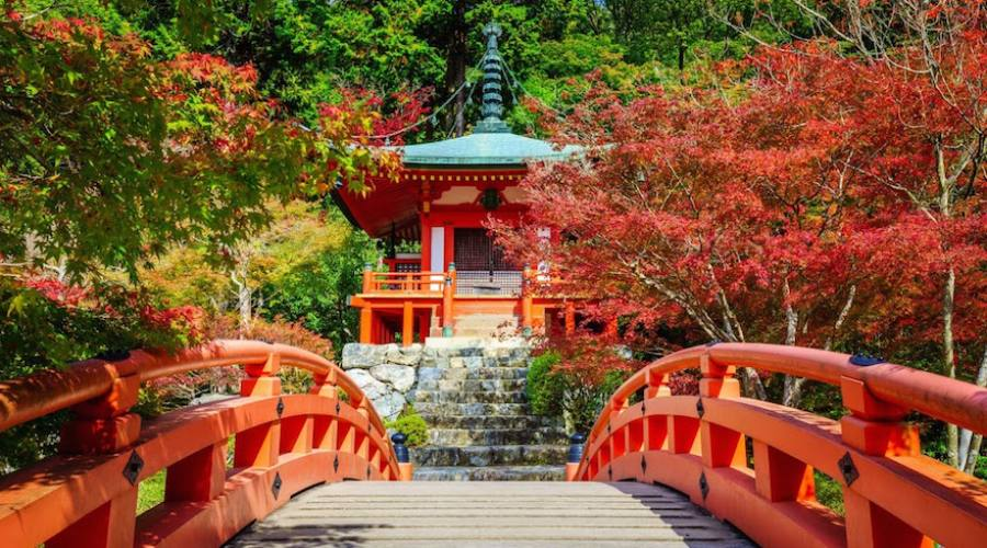 Kyoto - Tempio Daigo-ji