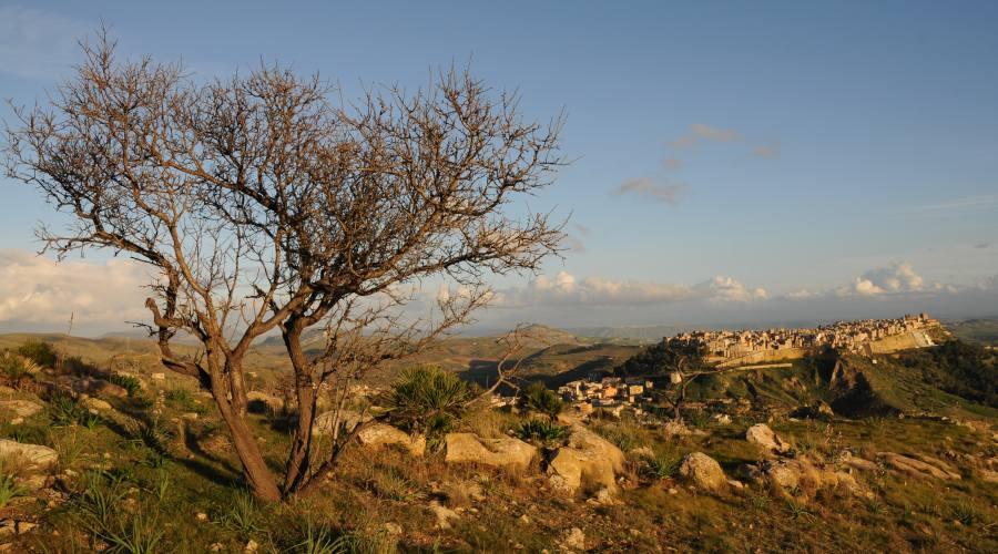 Butera, Panorama