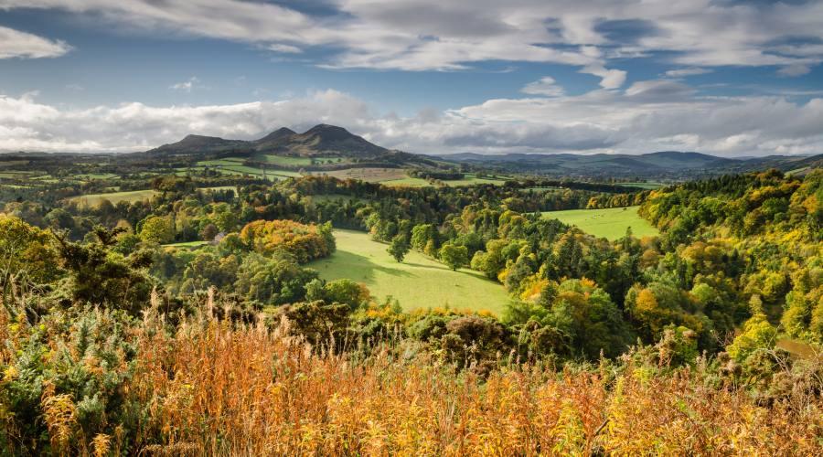 Colline di Eildon in autunno