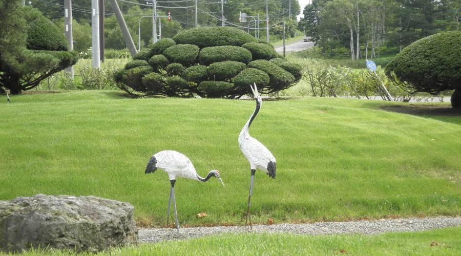 Kushiro - Parko Nazionale di Akan