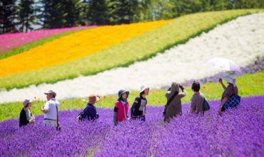 Alla Scoperta dell'Hokkaido