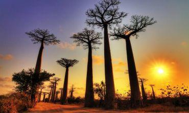 "Tour Tsingy de Bemaraha, un sito ""World Heritage"""