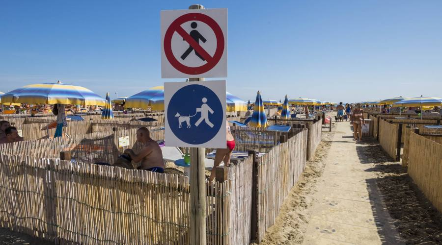 Rimini Dog NO Problem, bagno 81