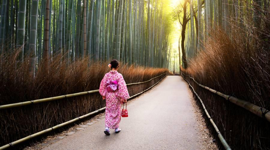 Giappone Foresta Bambù