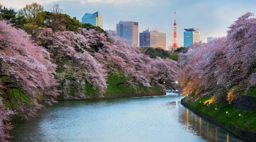 Tokyo Giardino Isuien