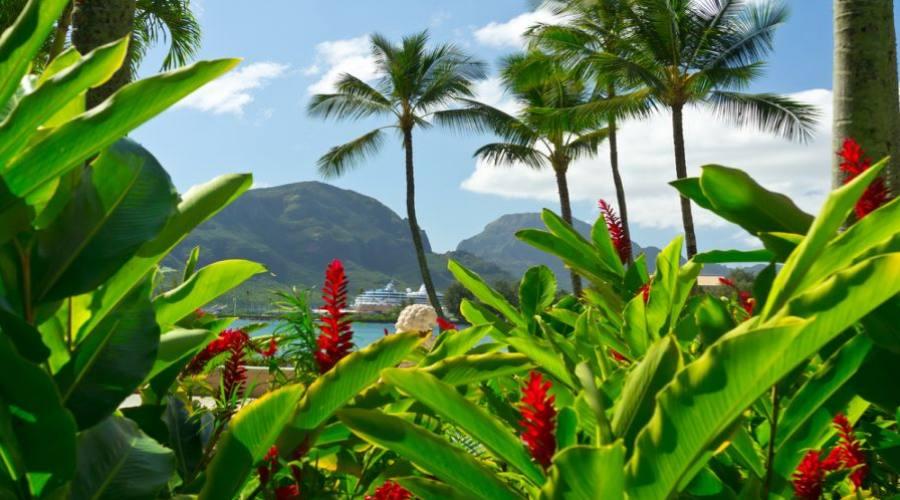 Beautiful view of Nawiliwili, Kauai Island