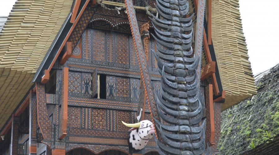 Monili tipici delle abitazioni nella terra di Toraja