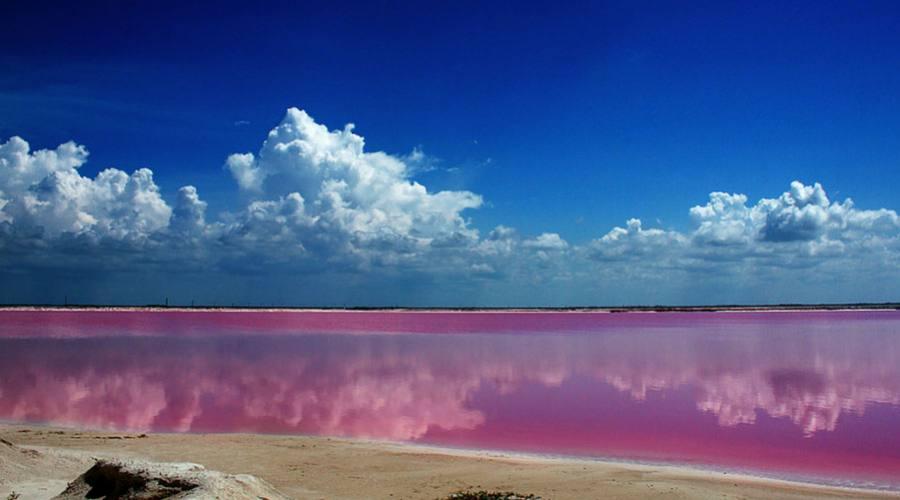 Escursioni: Las Coloradas (Yucatan)