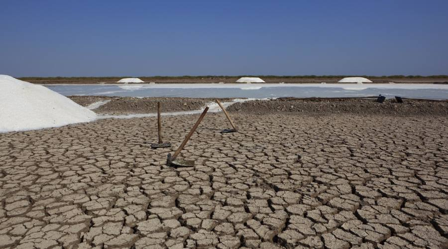 Deserto del Kutch