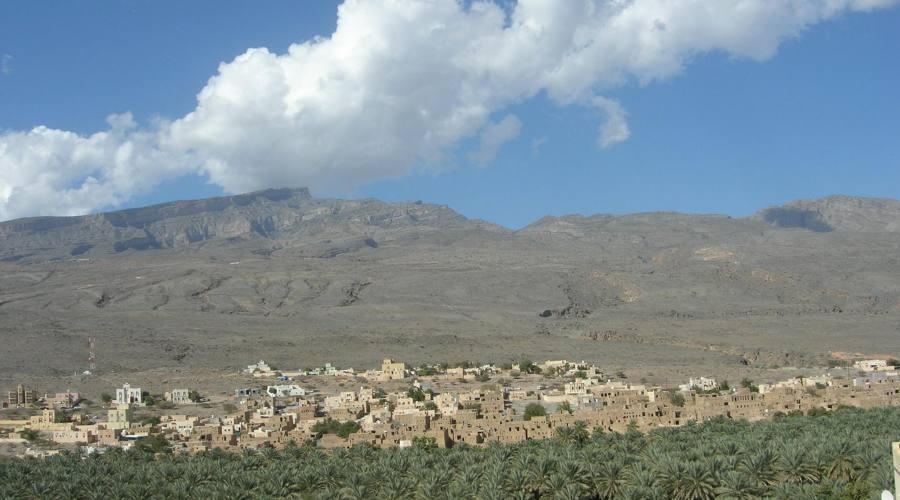 Palmeti in Oman