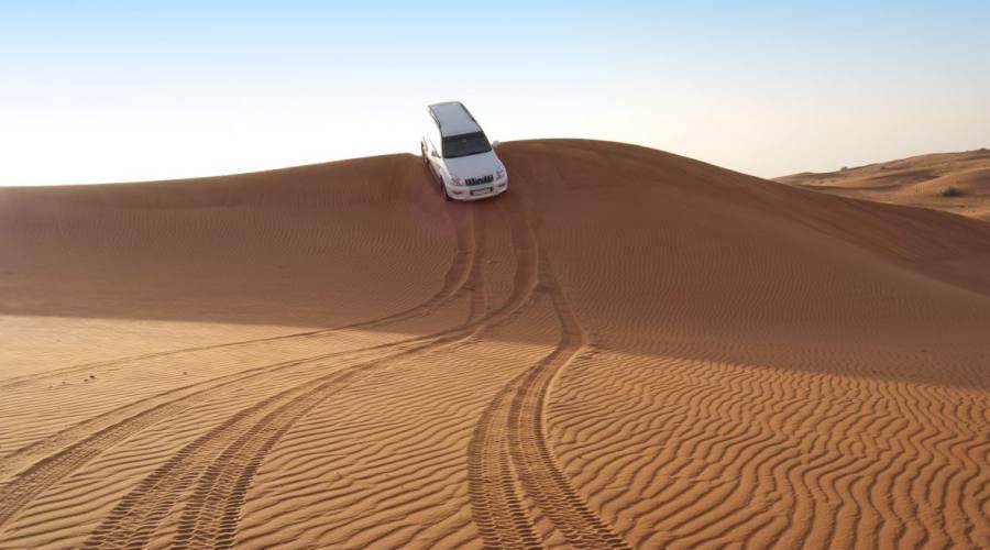 Arabian desert