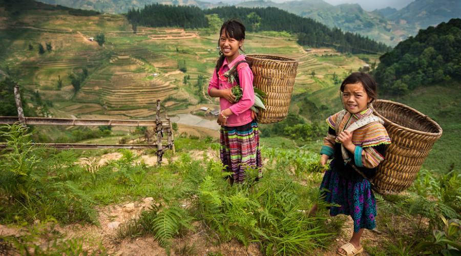 Campagne vietnamite