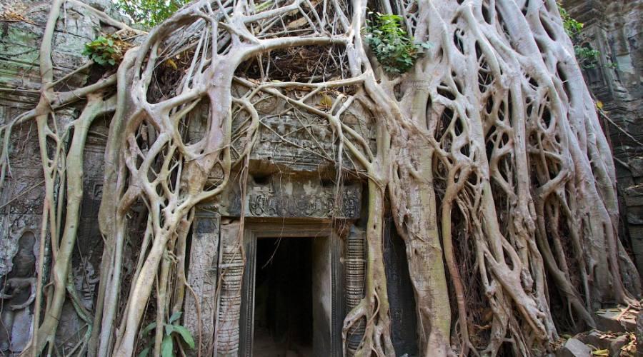 Dettaglio di Angkor