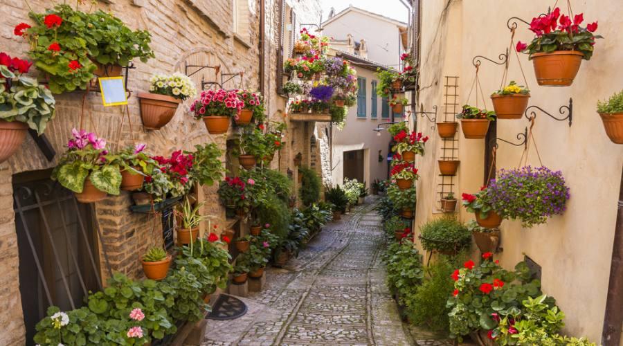 Romantica strada della città antica di Assisi