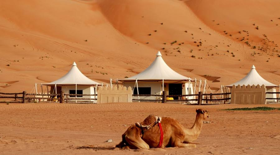 Wahiba Sands e  Desert Night camp