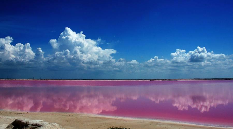 Escursioni: Laguna Rosadas (Yucatan)