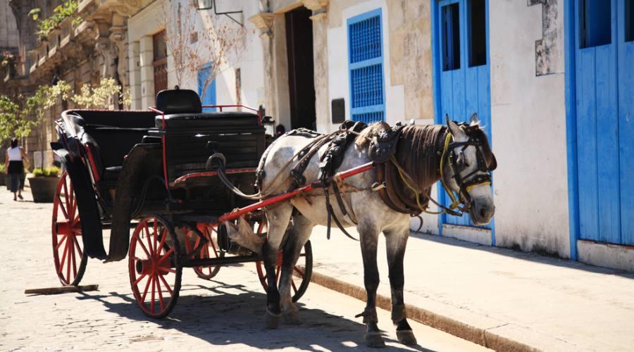 Carrozza a l'Avana, Cuba