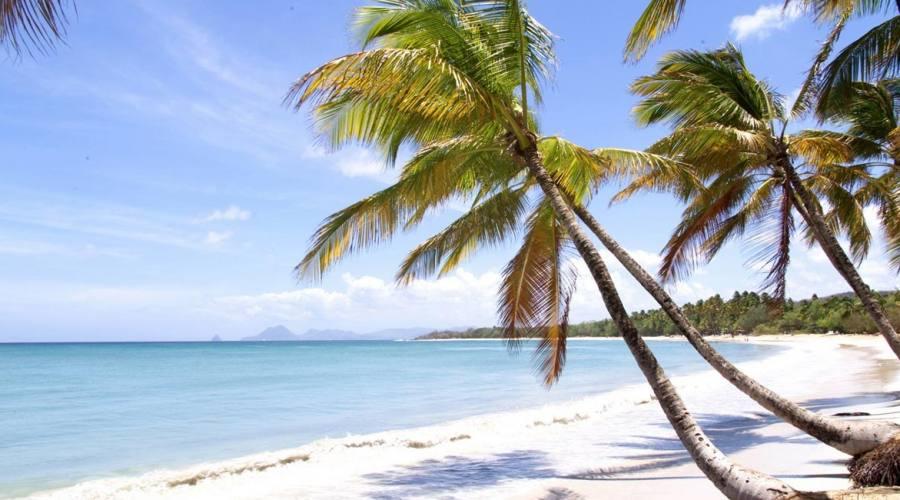 Una delle bellissime spiagge nel sud di Martinica