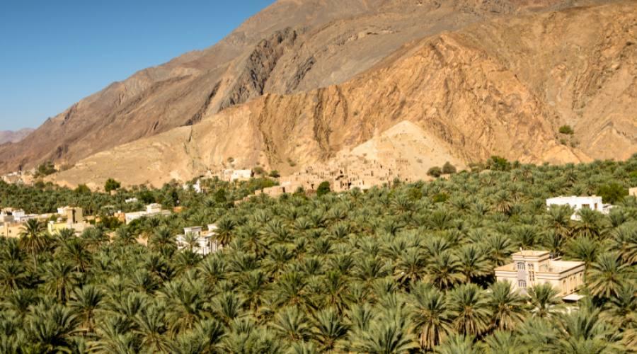La Montagna Verde di Jabal Akhdar