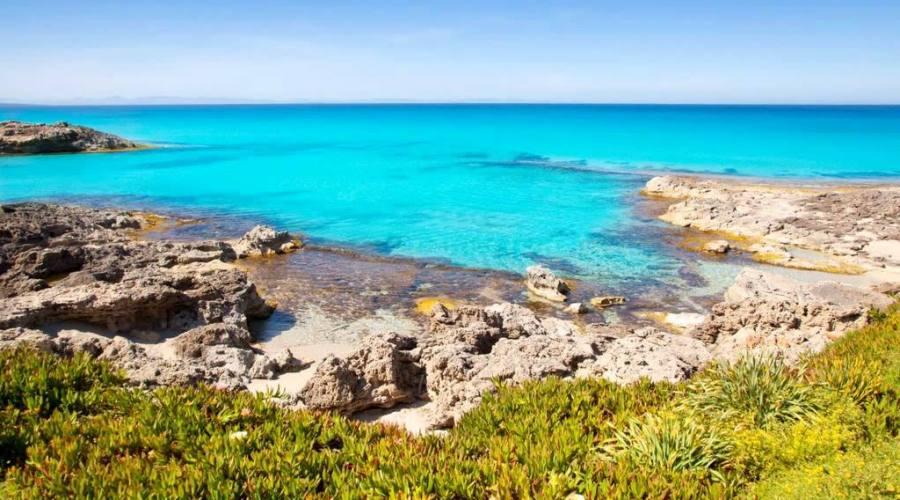 il mare incontaminato di Fuerteventura