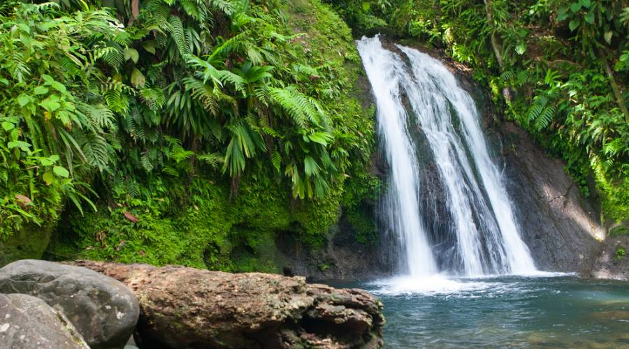 Cascate e natura lussureggiante in Basse Terre