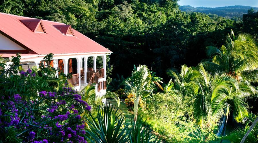 Il rigoglioso giardino tropicale di Habitation Grande Anse