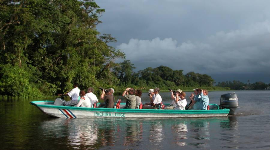 Parco nazionale Tortuguero - in barca nei canali!