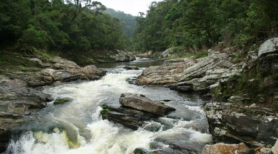 Fiume roccioso nel Parco nazionale di Ranomafana