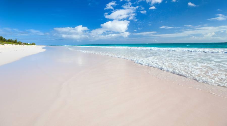 La spiaggia rosa di Harbour Island