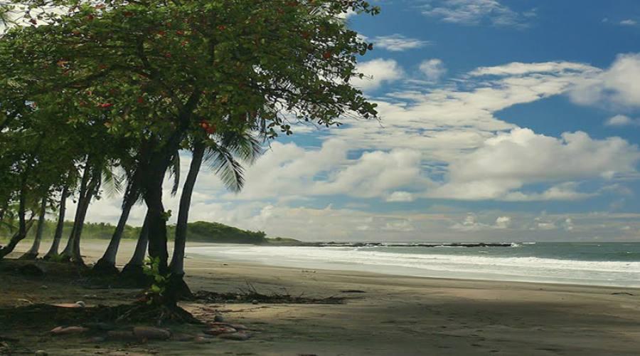 Playa Junquilla