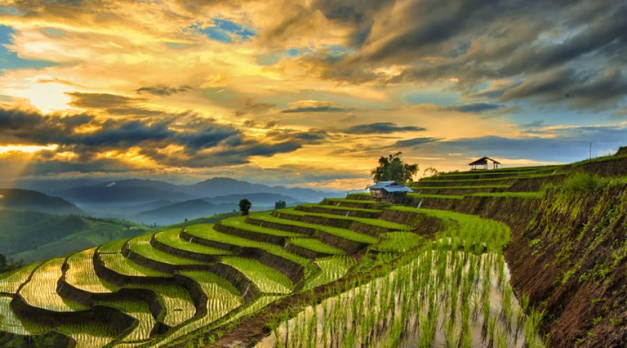 Cina Terrazzamenti a Longsheng