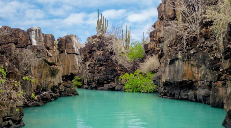 Las Grietas: canyon e piscina naturale