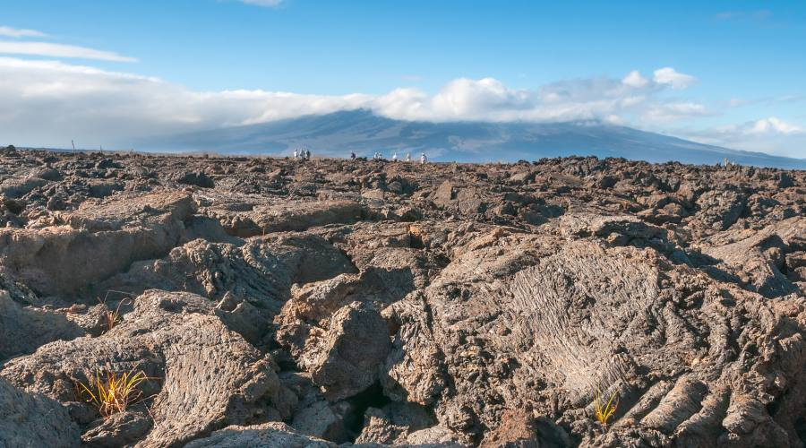 Distesa vulcanica, Isabela